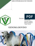 genoma bovino