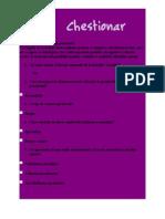 Chestionar(GaudiHotel)
