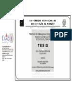 CENTRODEDESARROLLOCOMUNITARIOIGNACIOLOPEZRAYONENMORELIAMICHO (1).pdf