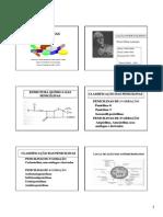 PenicilinasM5 2013 PDF