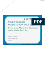 Chapter 02 Marketing Strategies and Marketing Plan