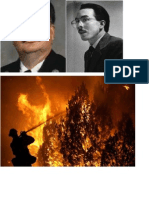 Pyromania Project Pictures