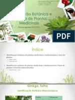 Farmacognosia FINAL (1).pptx
