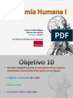 Anatomahumanai Mduloii Presentacinfase3pdf Objetivo10 Curso2013 2014 131022123013 Phpapp02
