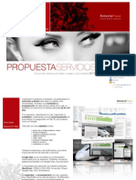 Antonio Painn Propuesta Servicios 2013