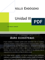 Desarrollo Endógeno unidad 3