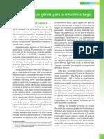 3. Estratégias Gerais para a Amazônia Legal
