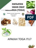 pemanfaatan5tanamanobatkeluargatoga-130726191601-phpapp02