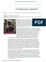 """""""Los depredadores de tortugas baulas van ganando la batalla"""" _ Sociedad _ EL PAÍS"""