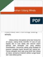 Pembenihan Udang Windu