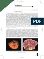 Trufa y truficultura REVISTA MICOLOGICO 17406.pdf