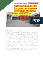 Lineamientos Generales Del Servicio Social Obligatorio i.e. Braulio Gonzalez