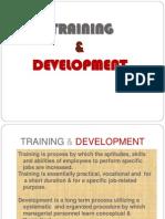 Training Dev 1