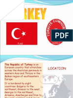 turkey-ppt-1232662650592726-3