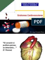 Unid Sindr Cardiov II