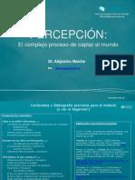 Clase 4-5 y6 Percepcion