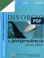 Jurisprudencia Del Divorcio en El Peru