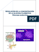 Tema 13 Pancreas Endocrino