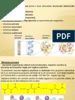 Biochimie-curs 7 Proteine