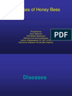 Diseases of Honey Bees 2008 - 42 Pag