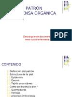 Patron de Defensa Organica, Www.cuidarenfermeria.com