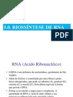Biossintese de RNA