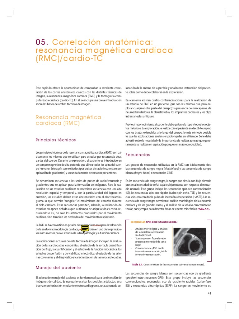 Fantástico Anatomía Sincronización De Exploración Ilustración ...