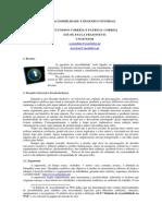 desenho_universal.pdf