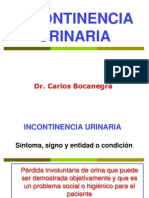 Clase 15.- Incontinencia Urinaria Final2