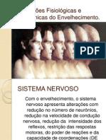 alterações fisiológicas e anatômicas do envelhecimento aula 02