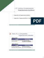 Lectura complementaria tema 7.pdf