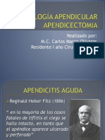 Apendicitis Aguda Apendicectomia_2