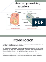 Células procariota y eucariota Final