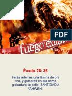 FUEGO EXTRAÑO