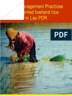 Best Management Practices for rainfed lowland rice in Lao PDR