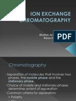 01 Ion Exchange Chromatography