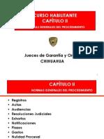 2 Normas Generales Del Procedimiento[1]Oralidad