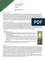 Outline.pdf