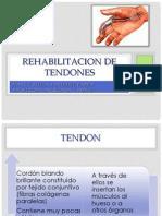 Rehabilitacion de Tendones_nl
