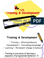Training and Dvelopment