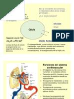 A.+Cardio+1+2013