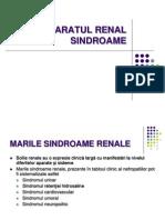 C14 RENAL Sindroame