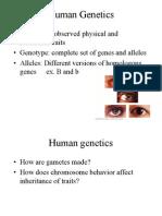 19 Human Genetics