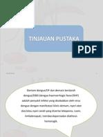 Dhf Presentasi Fix