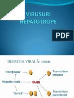 Hepatite a E