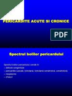 Pericard