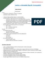 Dezvoltarea Ontogenetica a Sistemului Digestiv Si Urogenital
