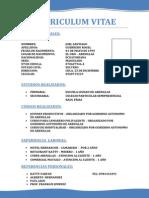 Curriculum Vitaejoel Guerrero