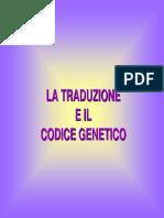 4 Traduzione CodiceGenetico