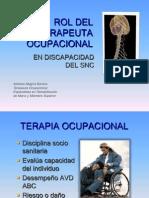 Rol Del Terapeuta Ocupacional (2)